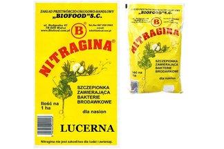 Nitragina 1 ha Szczepionka zawierająca bakterie brodawkowe dla nasion lucerny 300 g
