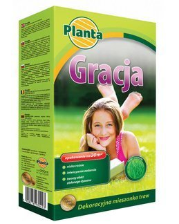 Trawa Gracja 0,5 kg – trawa niskorosnąca o szlachetnej, zielonej barwie