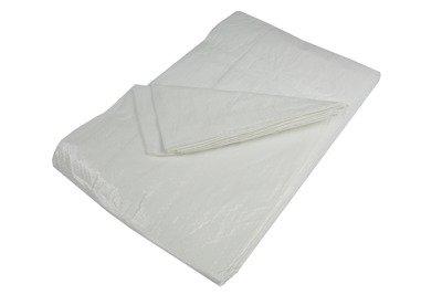 Plandeka okryciowa biała 5x8m