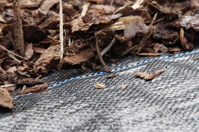Agrotkanina czarna 0,8x50m (90g)