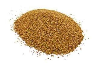 Lucerna siewna kwalifikowana, nasiona lucerny TRIADE - 10 kg