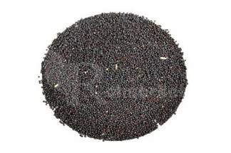 Perko Rzepik 1kg C1  kwalifikowane nasiona