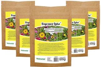 Uniwersalna mieszanka nasion roślin miododajnych Bzycząca Łąka 100% kwiatów Rolmarket 500g