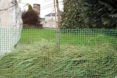 Siatka rabatowa 1,5x10m zielona - osłonka na drzewka