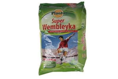 Trawa Super Wembleyka 2kg - trawa sportowa odporna na deptanie